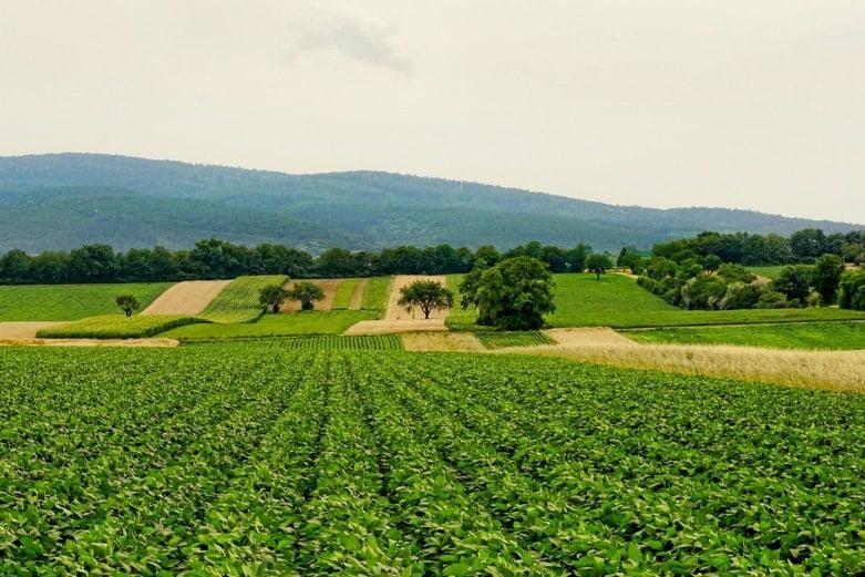 کشاورزی در فرانسه