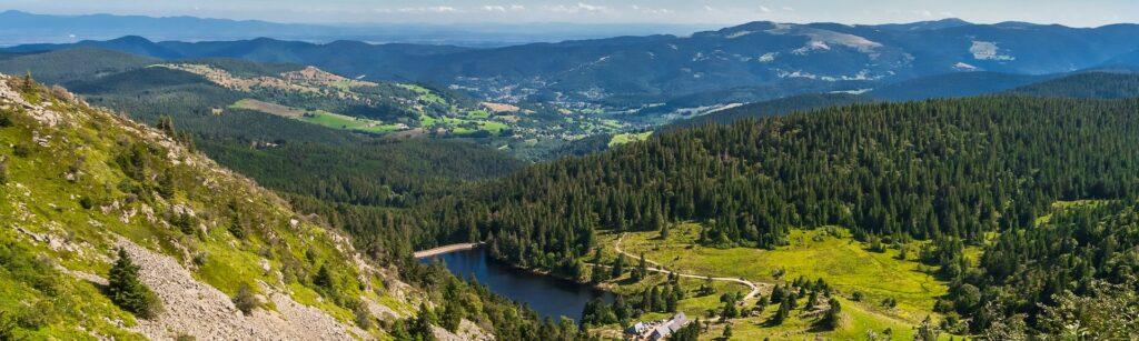 کوههای ووژ؛ بهشت سرسبز در ارتفاعات